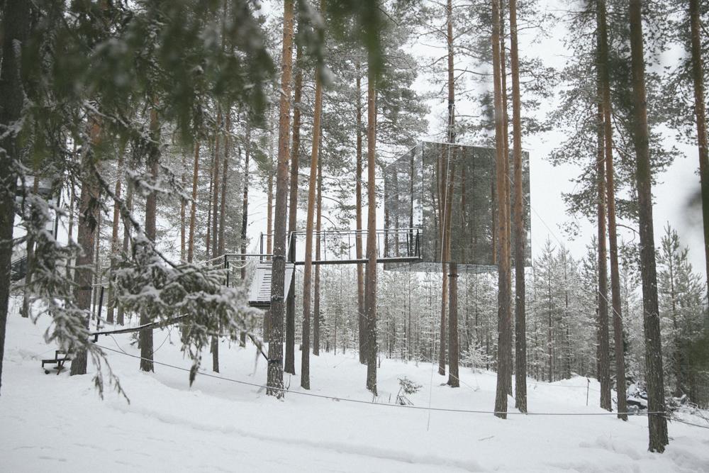 Treehotel-Sweden-16.jpg