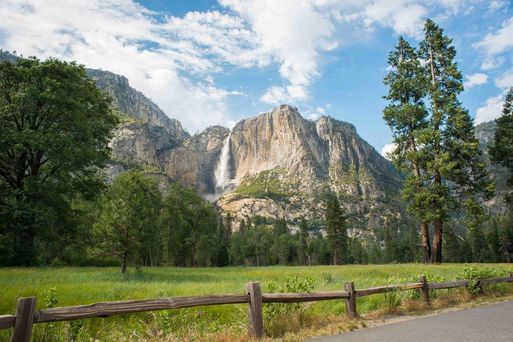 FMC_Yosemite_0616-10.jpg