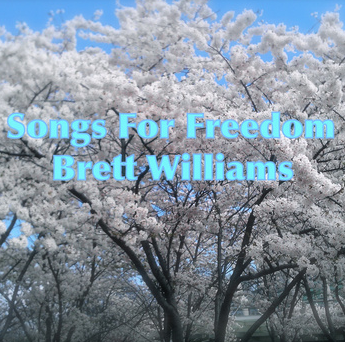 """Brett Williams says on his Bandcamp page, """"My music reflects the experiences in life I've had this far as well as my quest for the fundamental truth in this world."""""""