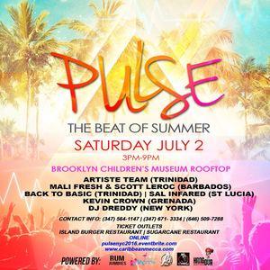 Pulse Promo Mix 2016