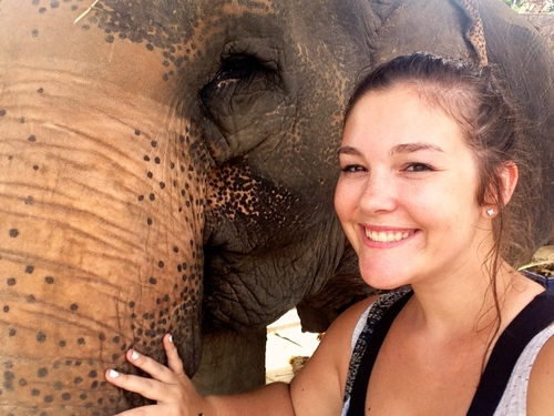 Hutsadin is an amazing place, they do such great work rescuing and caring for elephants in Hua Hin. This was a selfie I took with an elephant that is around 80 years old and was such a beauty. If you would like more information about Hutsadin, click     HERE     for my blog post on them.