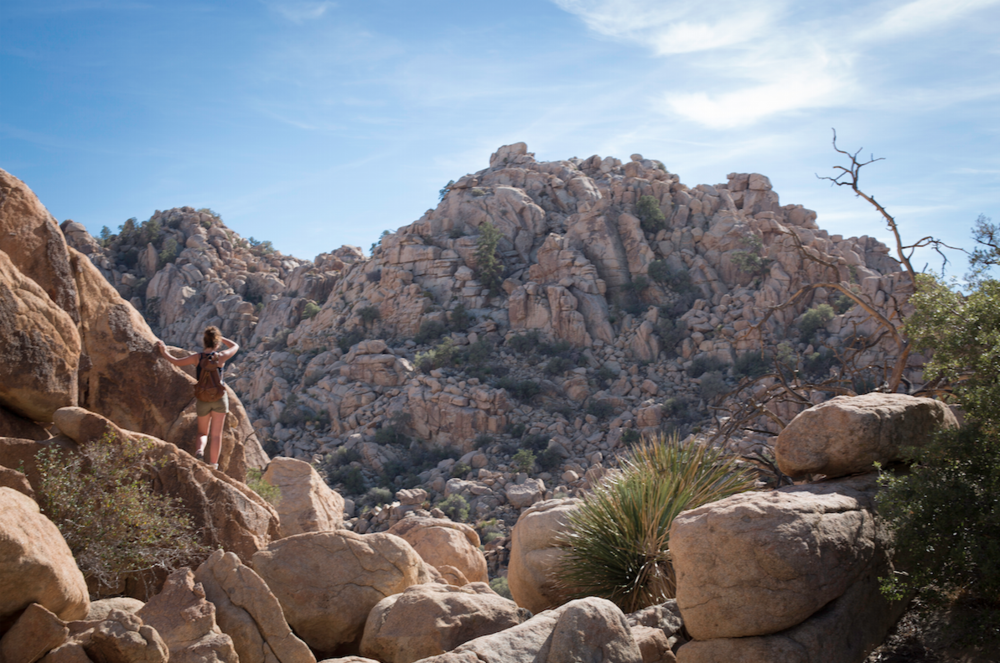 Zoe checking out the view in Joshua Tree, California.