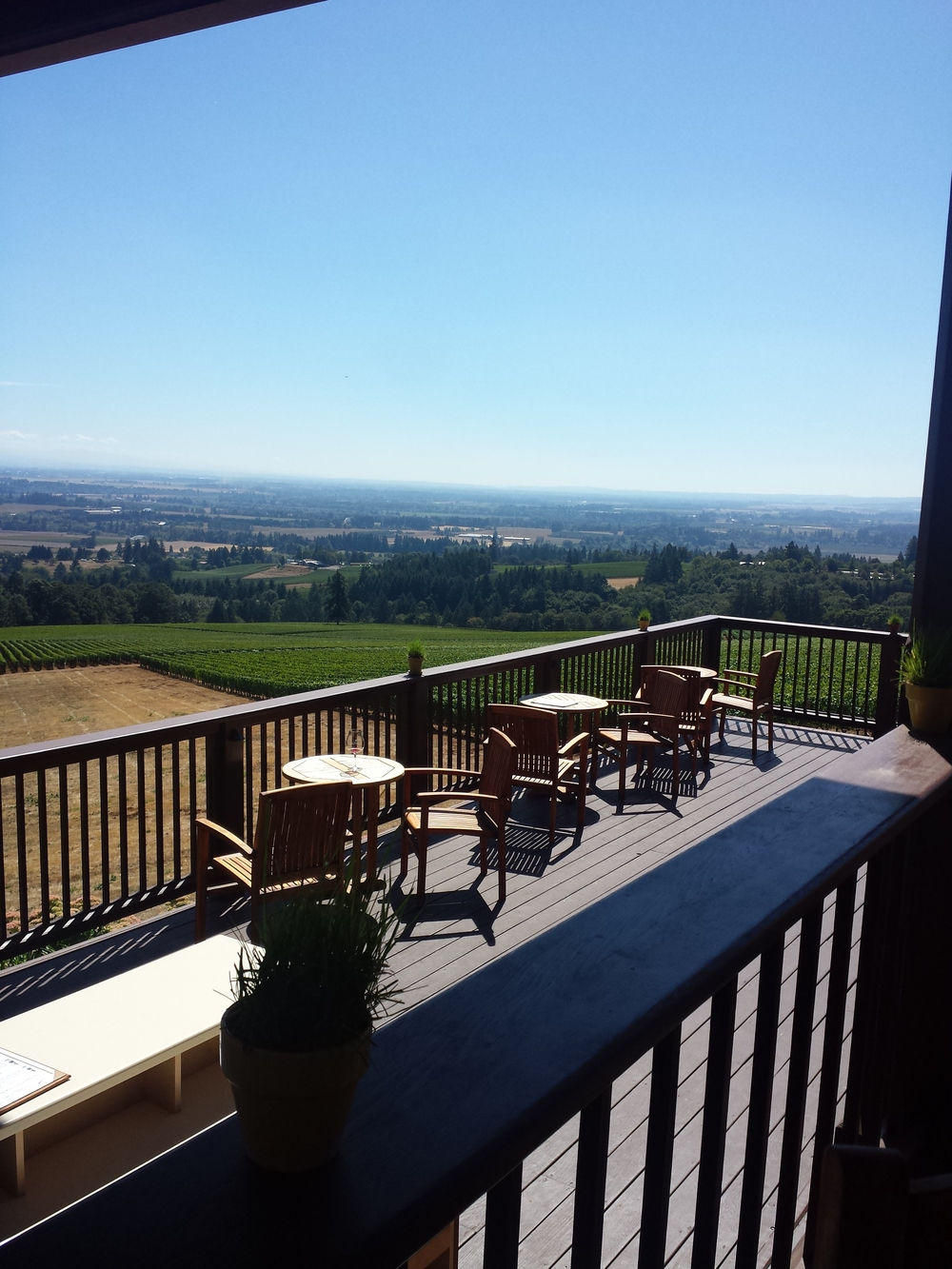 The patio at Domaine Drouhin made for a lovely day of staring into the distance.