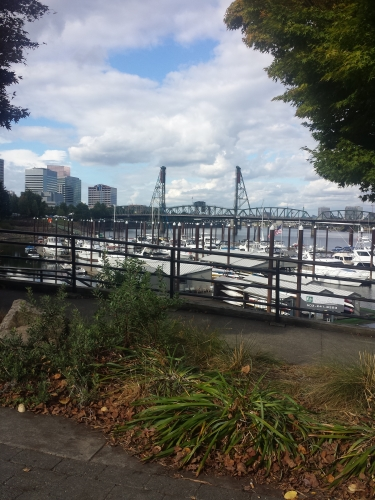 Portland's waterfront park is stunning...most of the year.