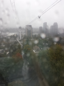 Rainy view from the Portland Aerial Tram yesterday afternoon.