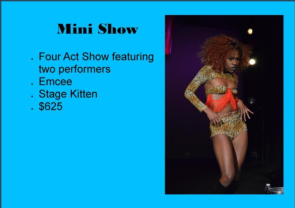 Mini Show.jpg