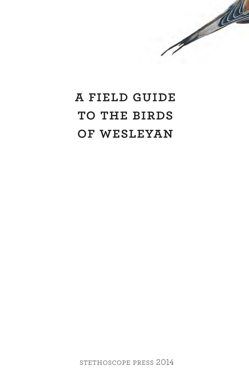 James_FieldGuide_Text screen lores (3)-page-001.jpg