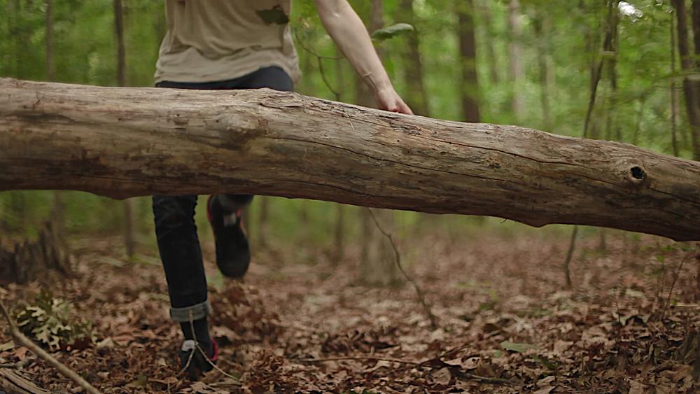 woods 133.jpg