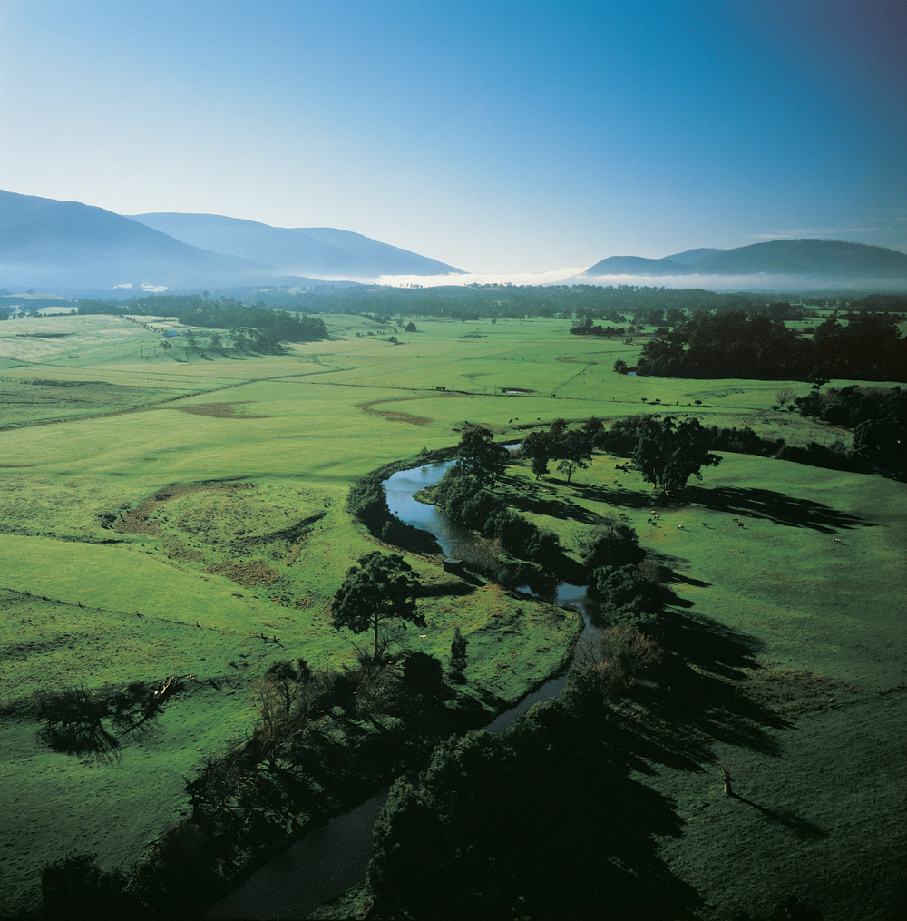 Misty mountains & rolling hills   Yarra Valley tour