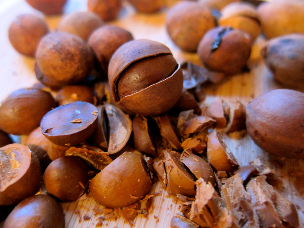 Bay Nuts — Rooted Food