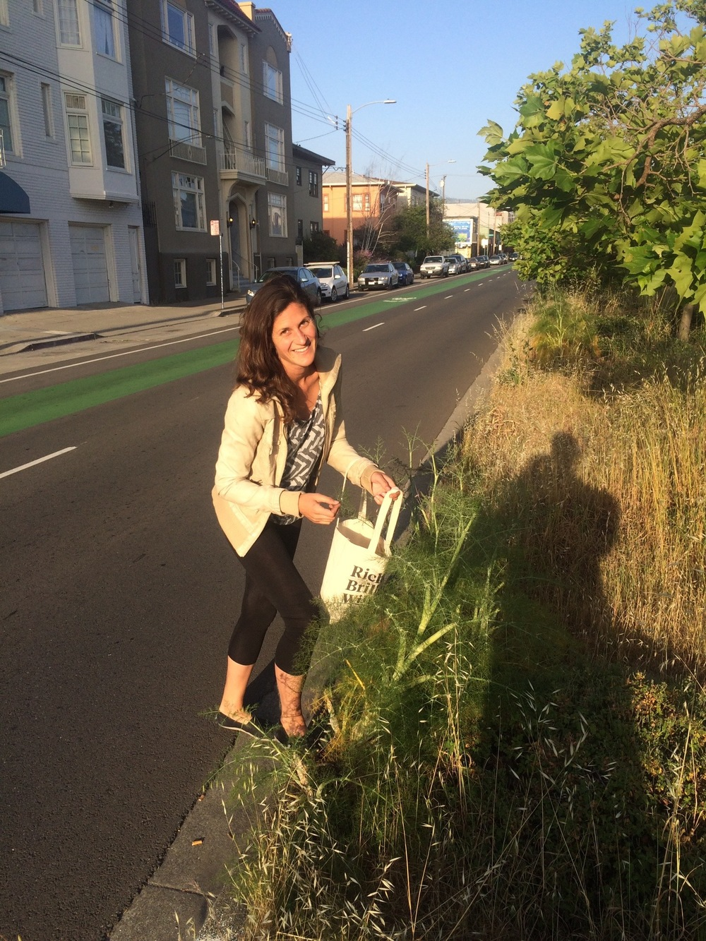 Foraging wild fennel in a North Oakland median.