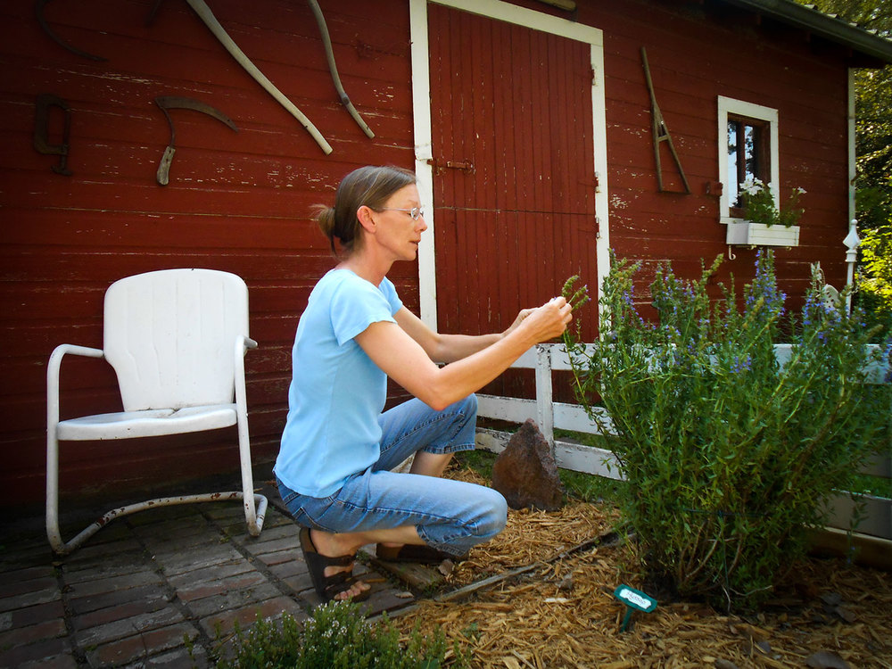 Rachel in the East Barn Garden tending Hyssop.JPG