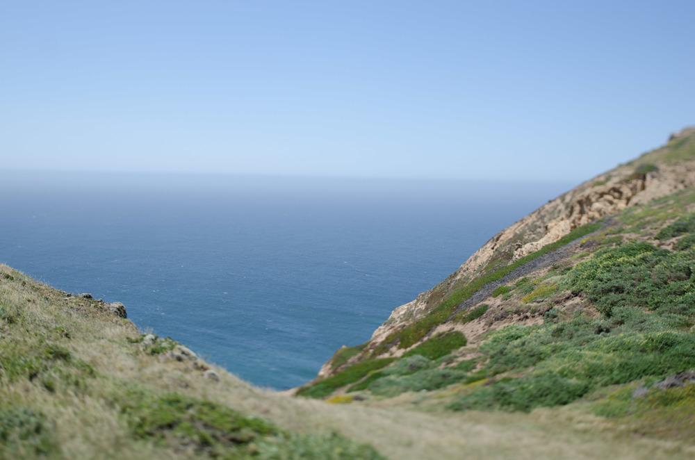 Cali_2014-2.jpg
