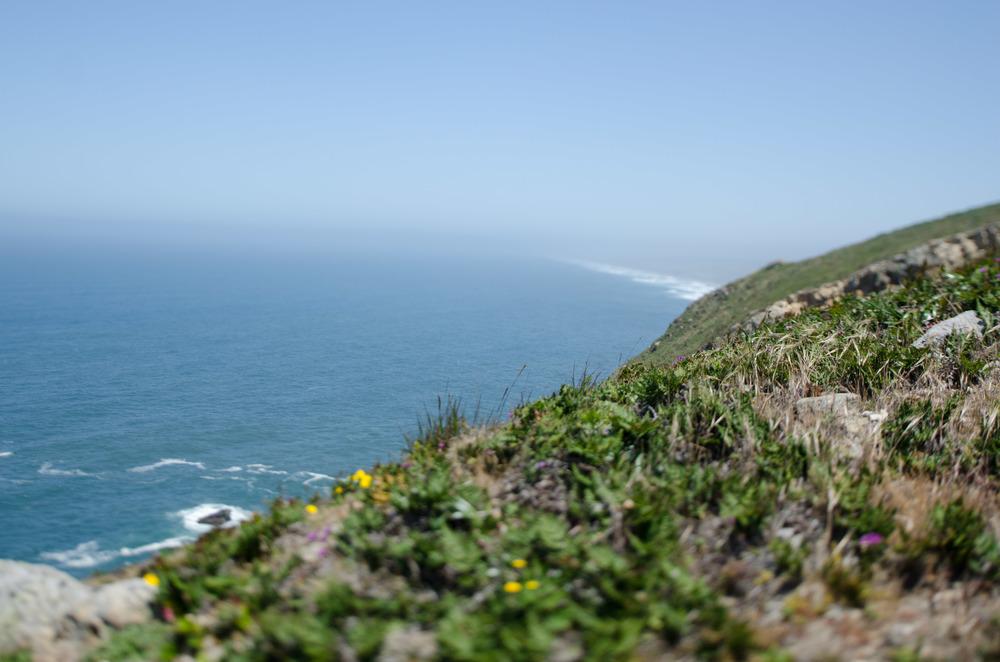 Cali_2014-37.jpg