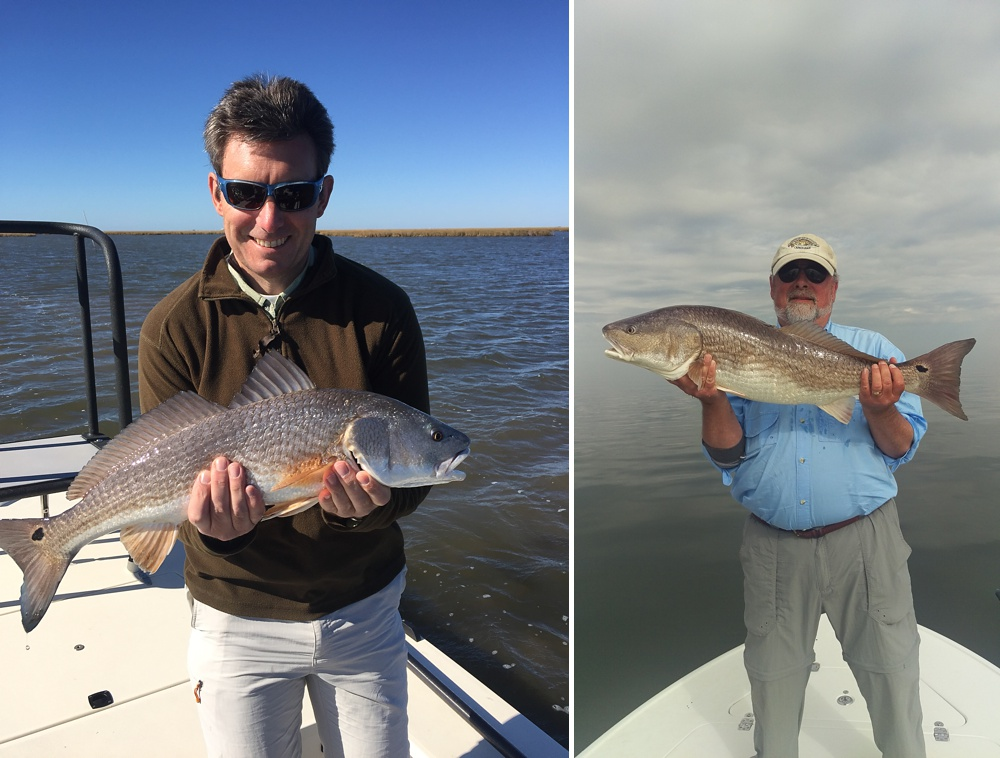 Nice redfish caught on fly in the Louisiana marsh near Port Sulphur.