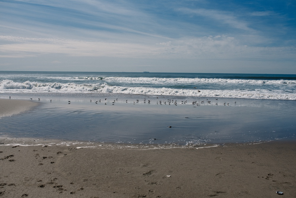 The beach at Fort Funston outside of San Francisco, California. Travel photography by Sonja Salzburg of Sonja K Photography.
