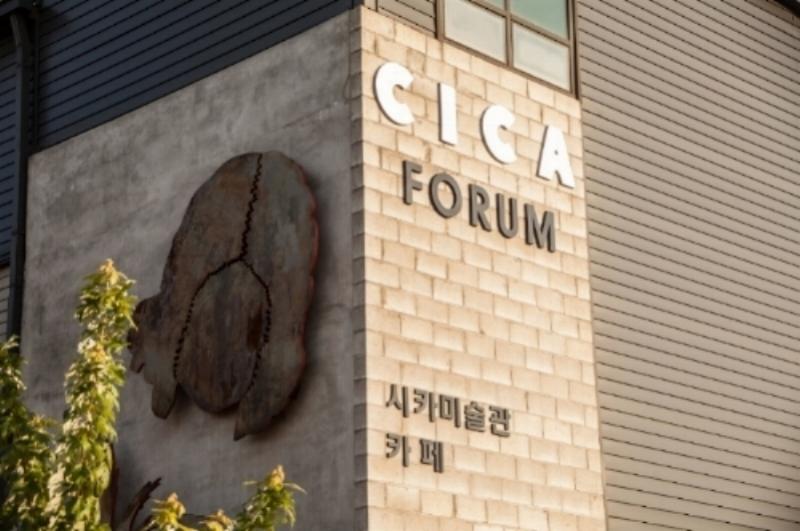 CICA NMAC 2017_50.JPG