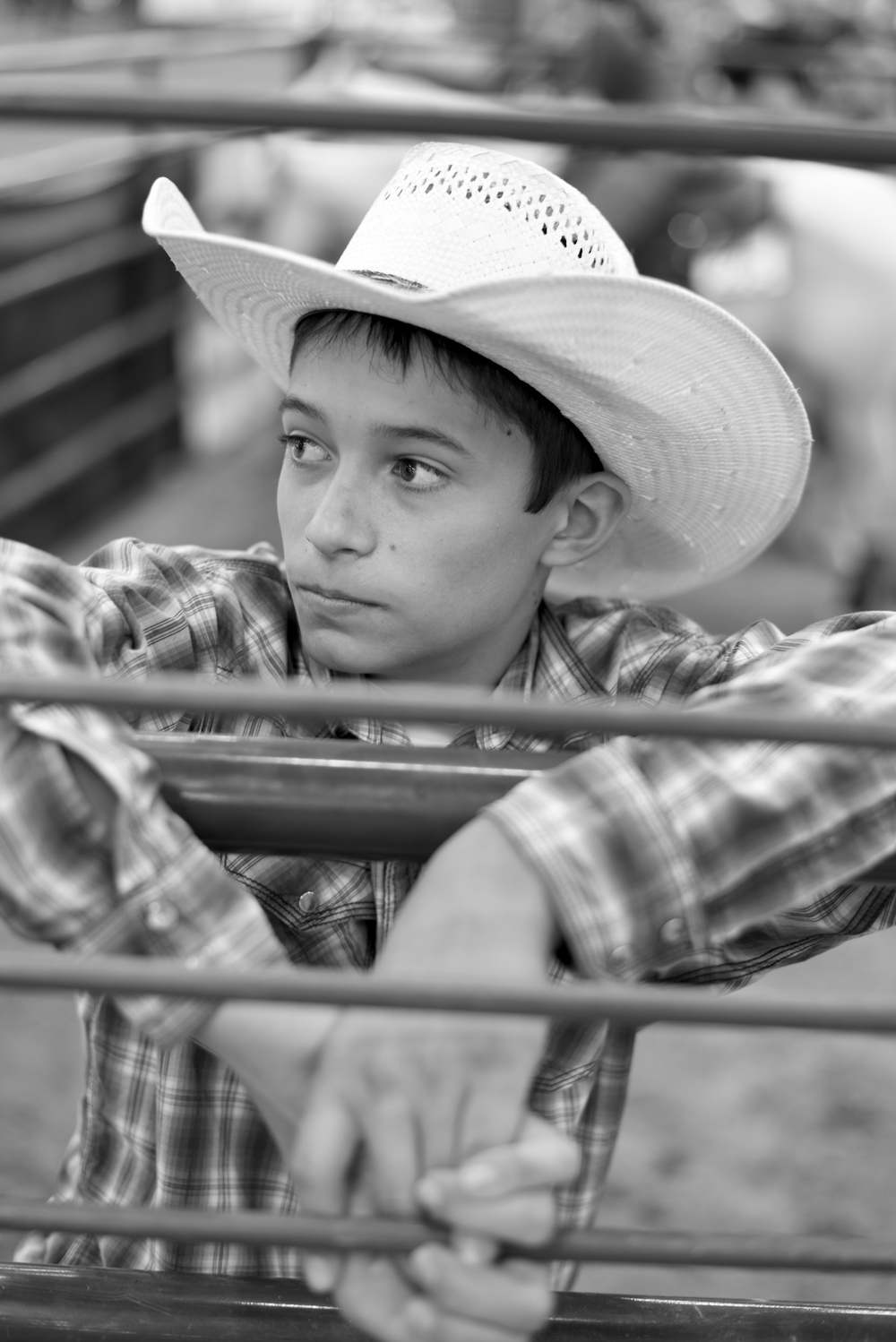 Stock Horse of Texas (SHOT) Show // Dripping Springs, Texas 2015