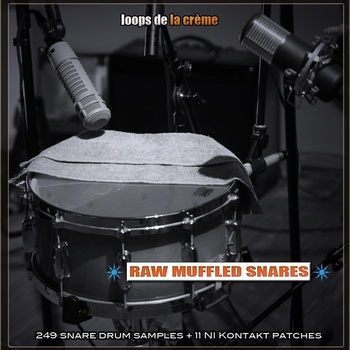 Raw muffled snares.jpg