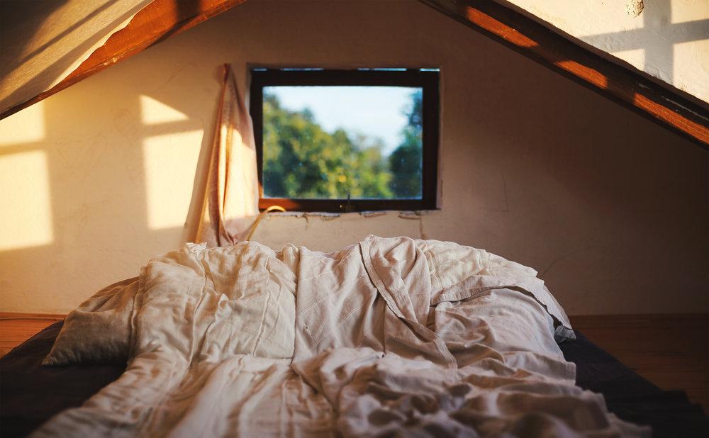 Cabin Life  - EXPERT |  Dejan Krsmanovic