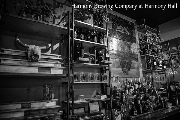 Harmony Hall Brewing