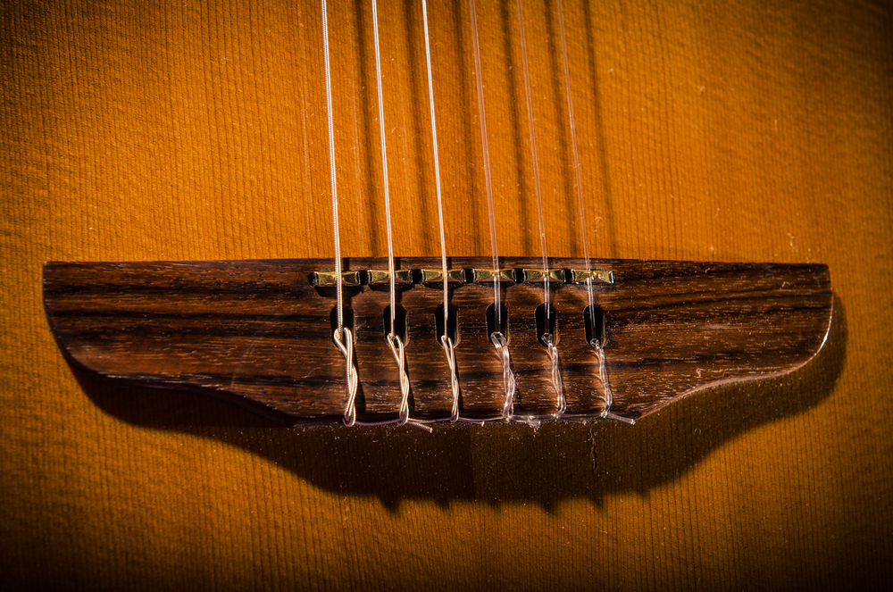 replace pickups 1994 godin multiac nylon erg90veg15 na 6 1 lbs chubbuck guitars making. Black Bedroom Furniture Sets. Home Design Ideas