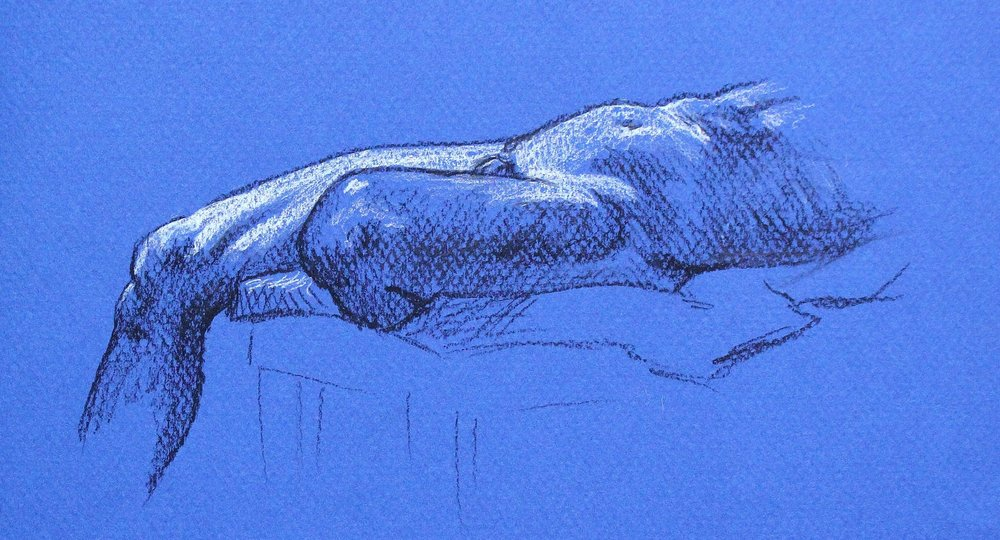 nude+male+figure+drawing