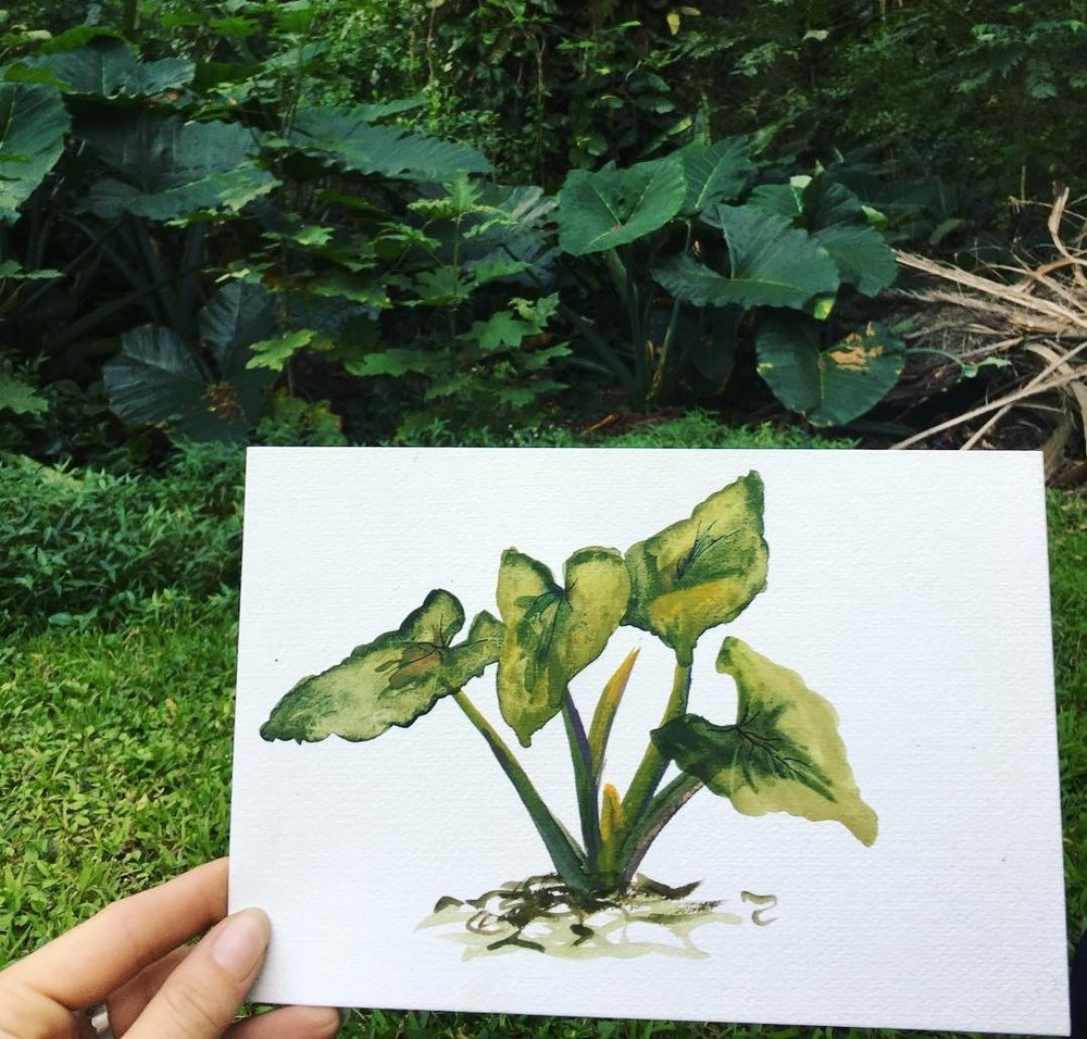paiting jungle leaves