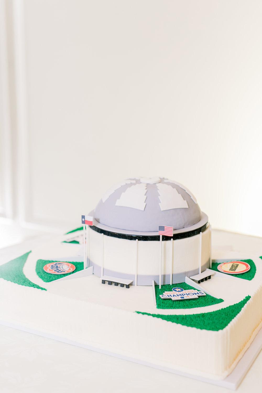 Houston Sports Cake | Grooms cake shaped like the astrodome