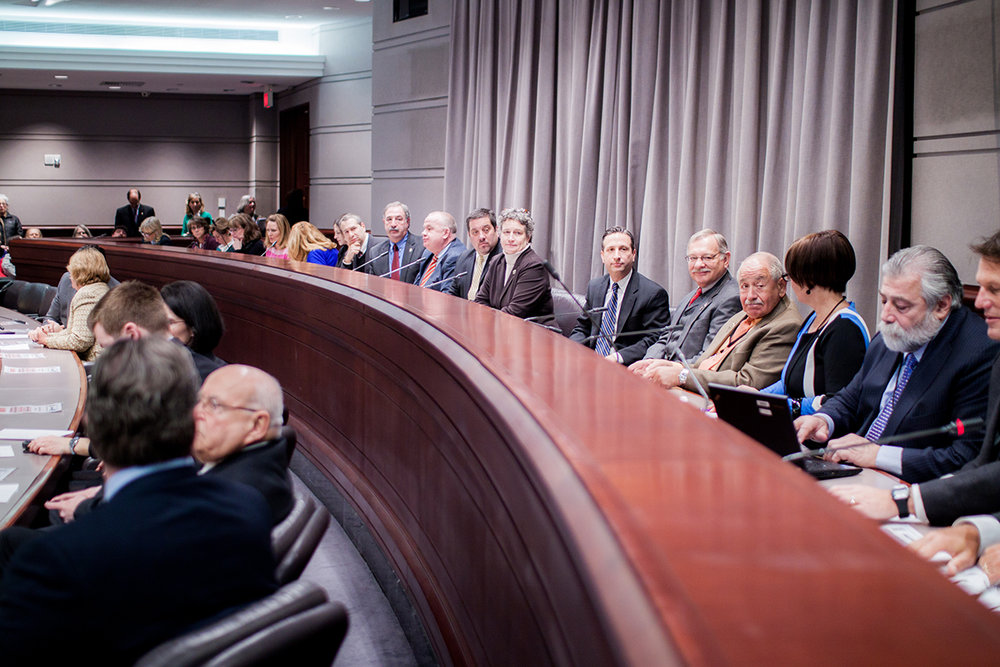 1.15.15 Family Action Hearing-19.JPG