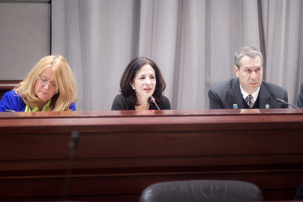 1.15.15 Family Action Hearing-31.JPG