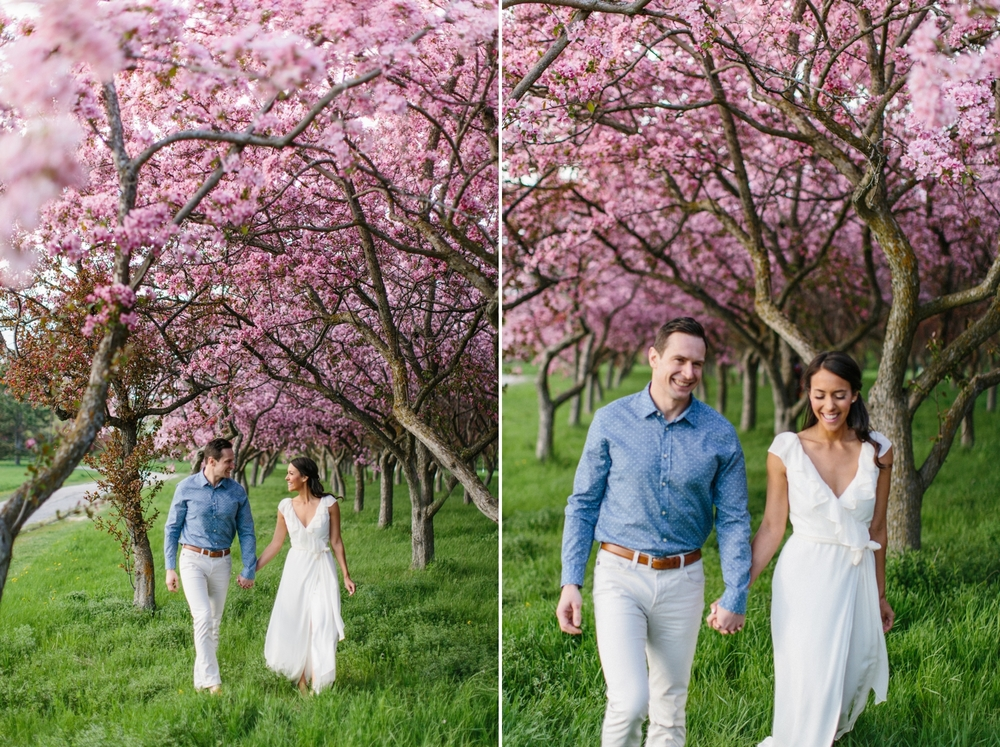 Ottawa Engagement Session Apple Blossoms 7.jpg