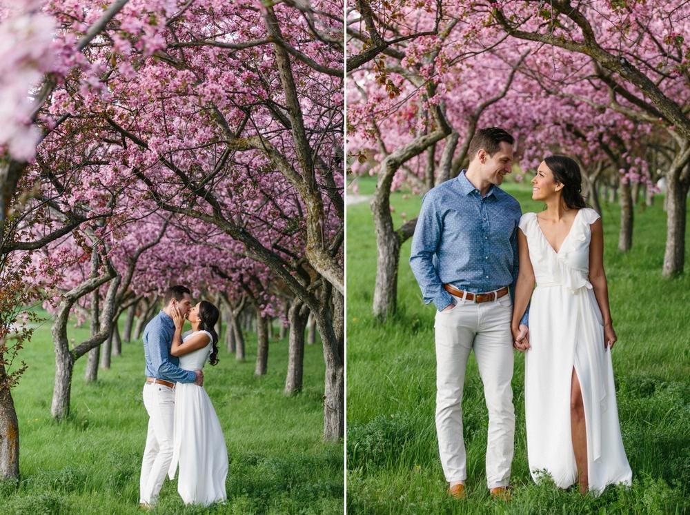 Ottawa Engagement Session Apple Blossoms 9.jpg