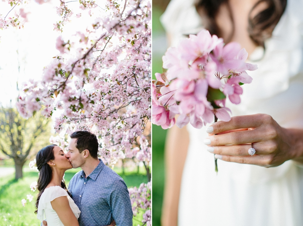Ottawa Engagement Session Apple Blossoms 14.jpg