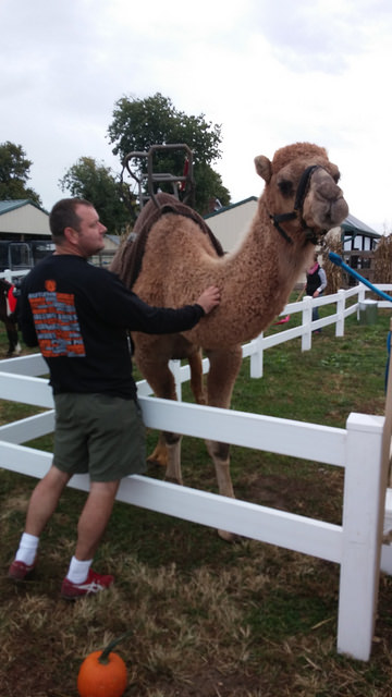 Eric and the friendly camel