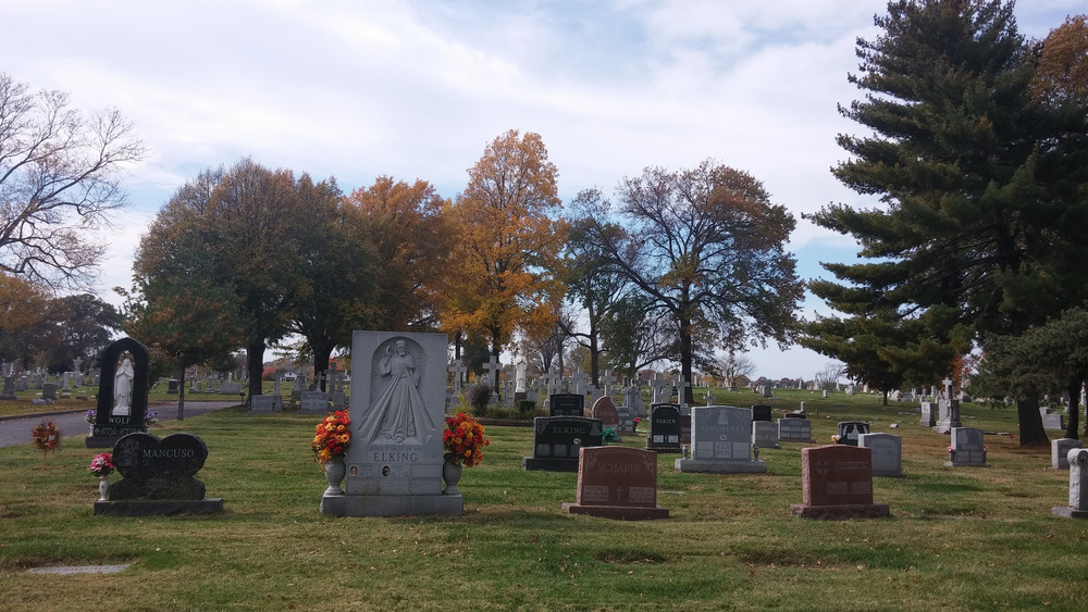 Saints Peter and Paul Cemetery in south St. Louis was very pretty when I walked there today.