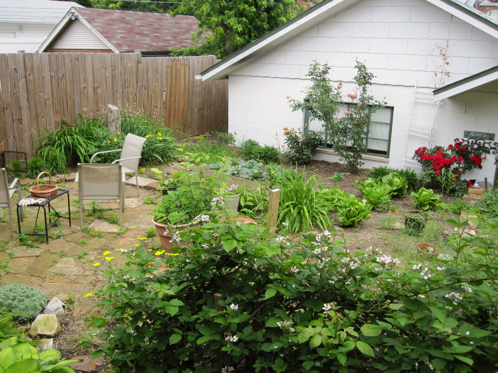 Our back yard, circa 2011, when it was mostly garden.