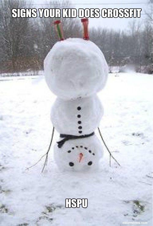 f72f60031e81238f88489051137db9e7--christmas-kitty-winter-christmas.jpg