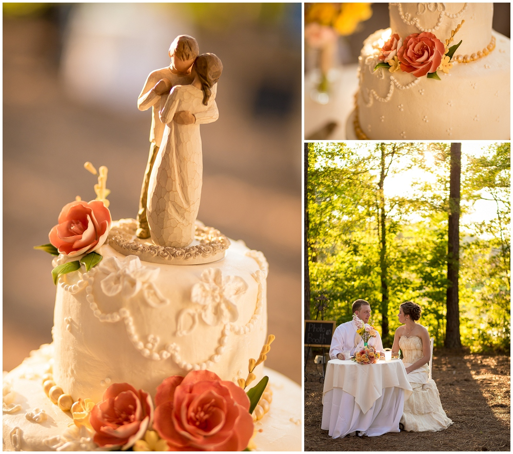 Wedding Cake, Richmond VA Wedding Photographer