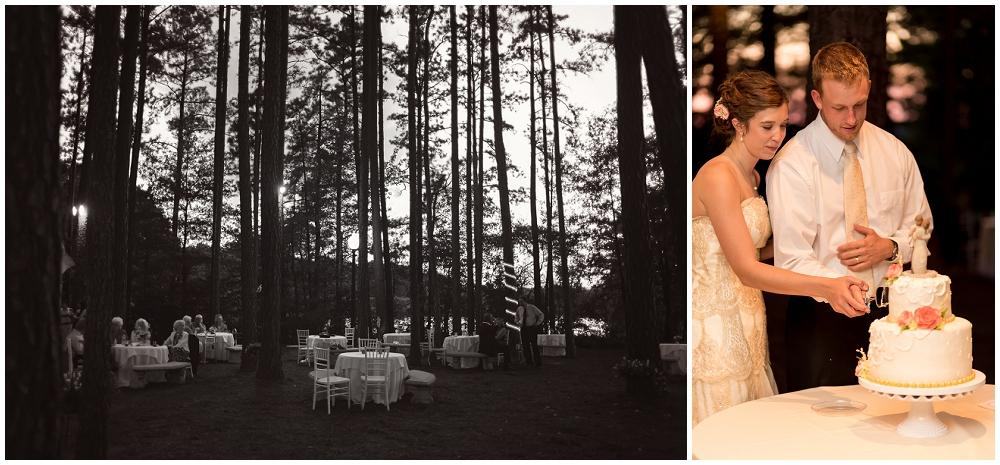 Cake, Richmond VA Wedding Photographer