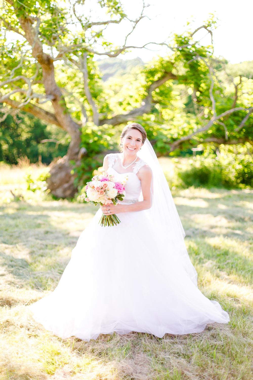 Destination Virginia Wedding Photographer