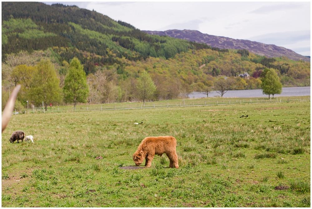 Europe Trip - Scotland-44.jpg