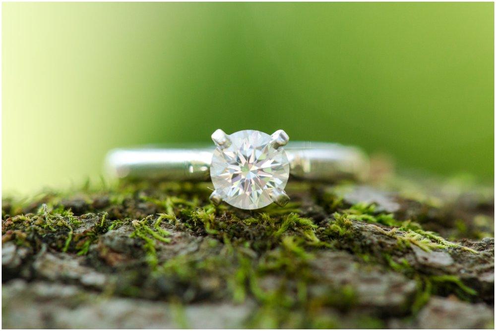 Engagement Photographer Richmond VA_0015.jpg