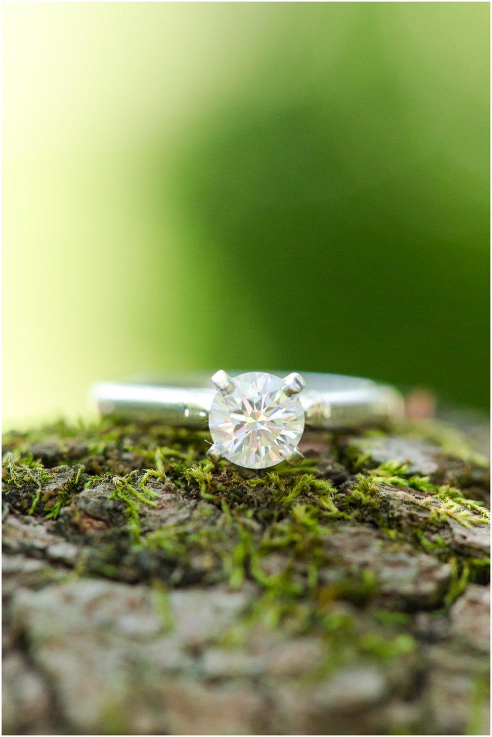 Engagement Photographer Richmond VA_0016.jpg