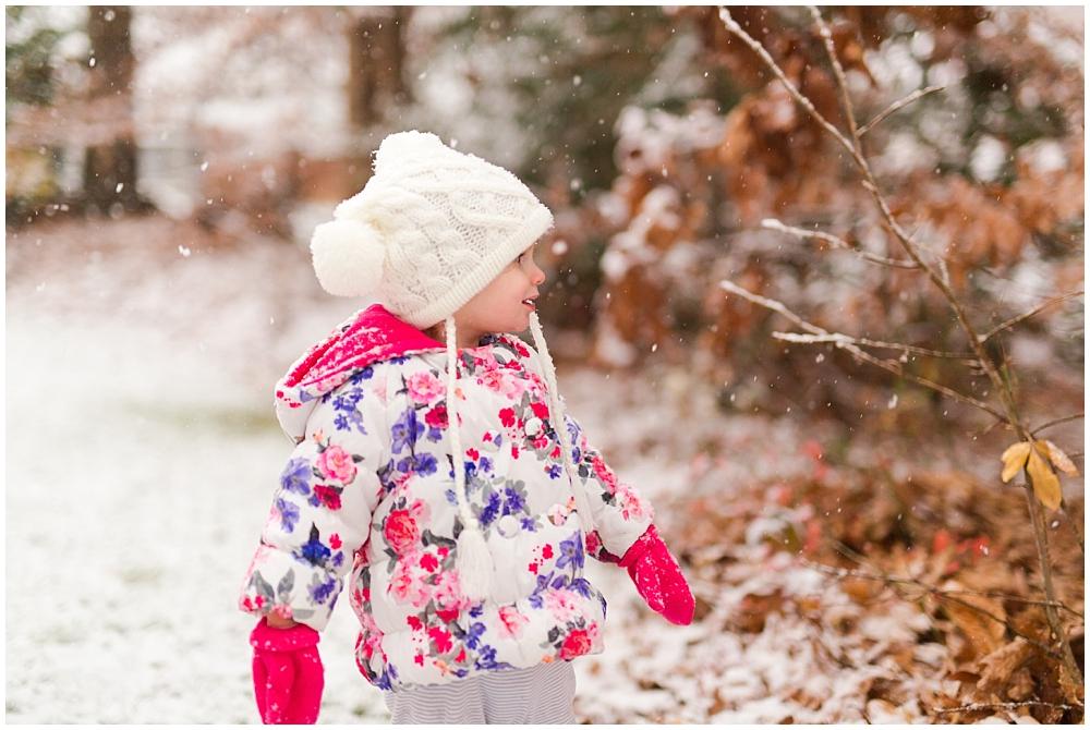 Snow_0013.jpg