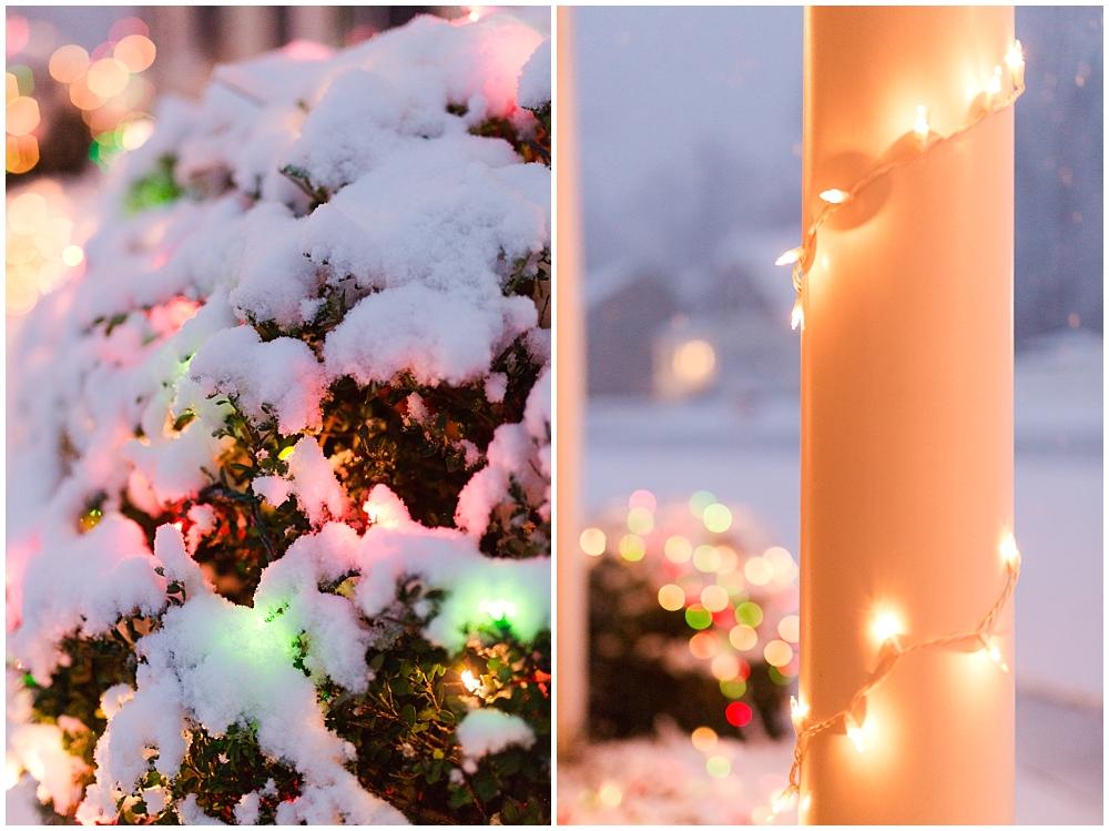 Snow_0017.jpg