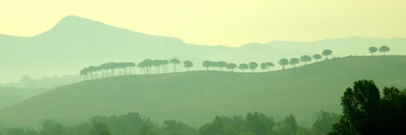 Tuscany's rolling hillsides