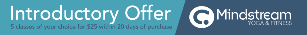 introductory offer coupon