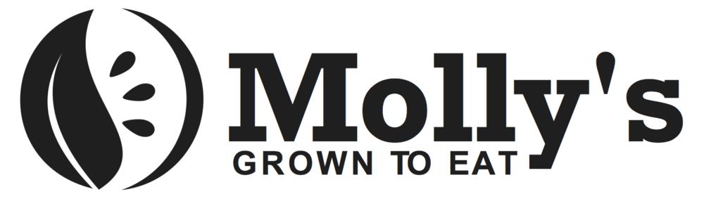 www.trymollys.com
