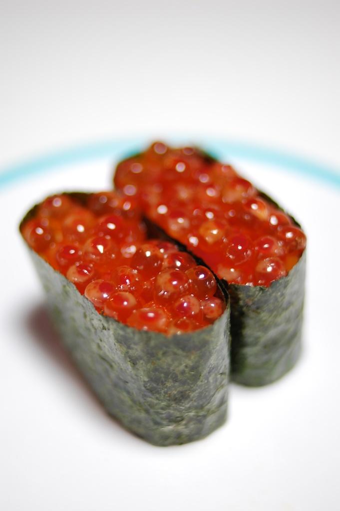 Salmon Roe (1).jpg